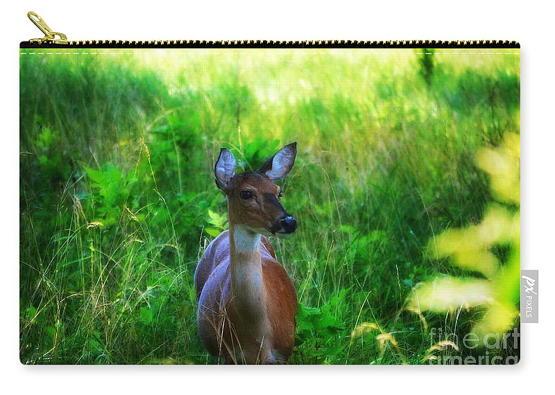 Landscape Carry-all Pouch featuring the photograph Young Deer by Peggy Franz