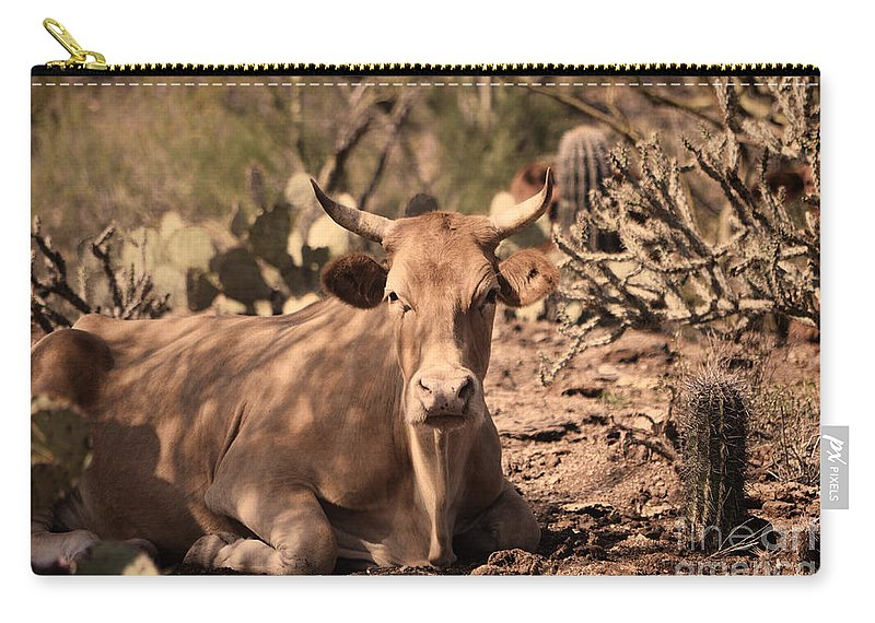 Livestock Carry-all Pouch featuring the photograph Young Longhorn Steer by Donna Greene