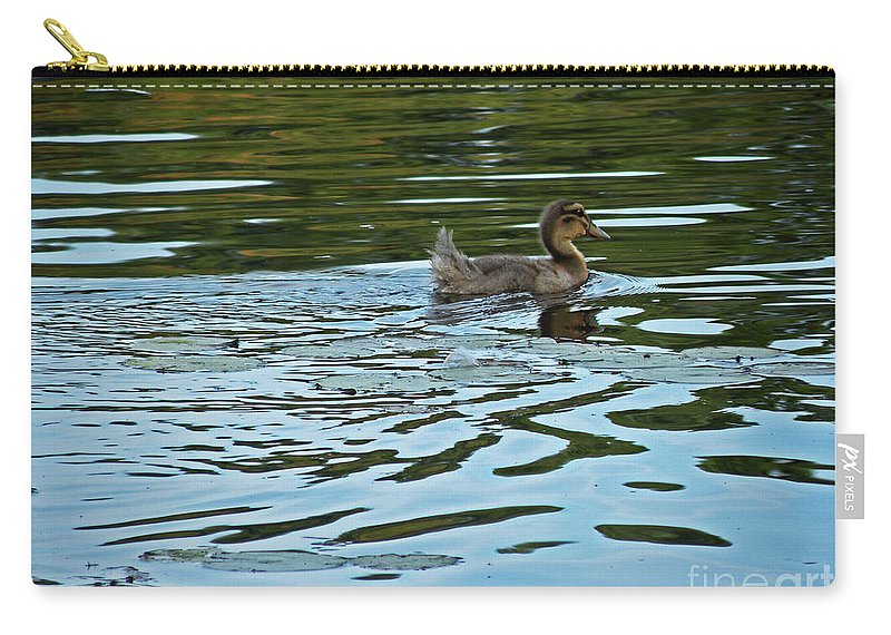 Scott Carry-all Pouch featuring the photograph Young Male Garganey by Scott Hervieux