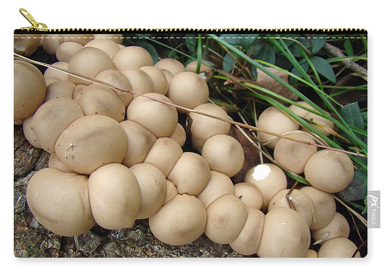 Mushroom Carry-all Pouch featuring the photograph You're Crowding Me by Mother Nature