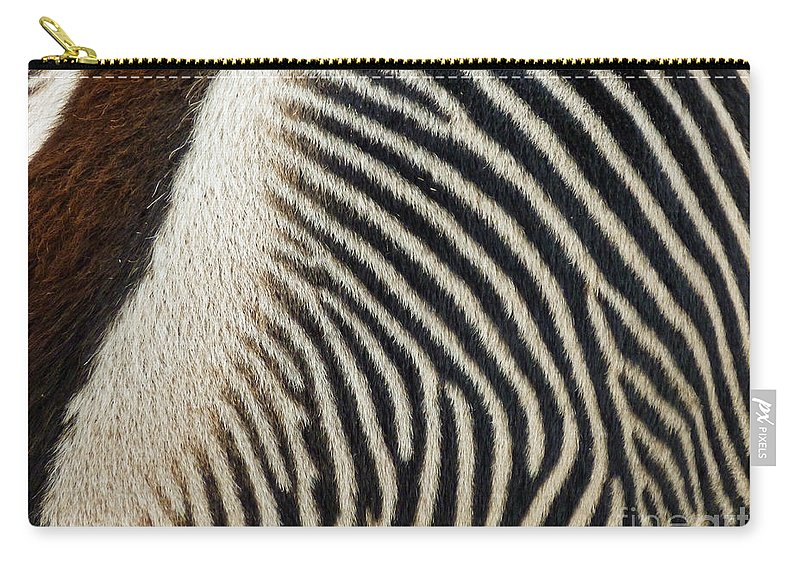 Zebra Caboose Carry-all Pouch featuring the photograph Zebra Caboose by Methune Hively