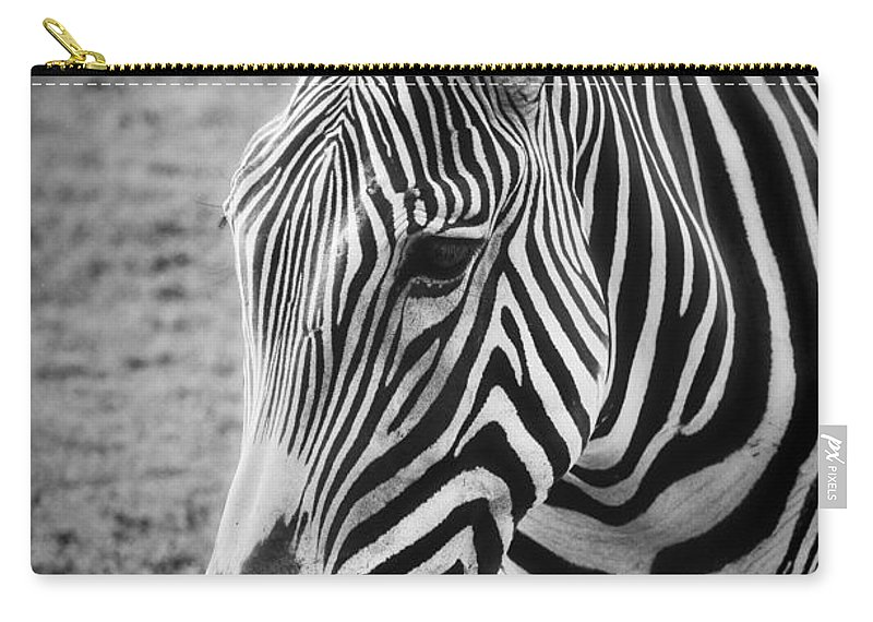 Zebra Carry-all Pouch featuring the photograph Zebra by Saija Lehtonen