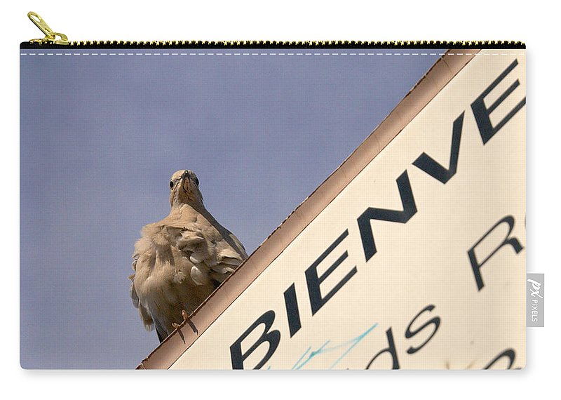 Lehtokukka Carry-all Pouch featuring the photograph African Collared Dove 2 by Jouko Lehto