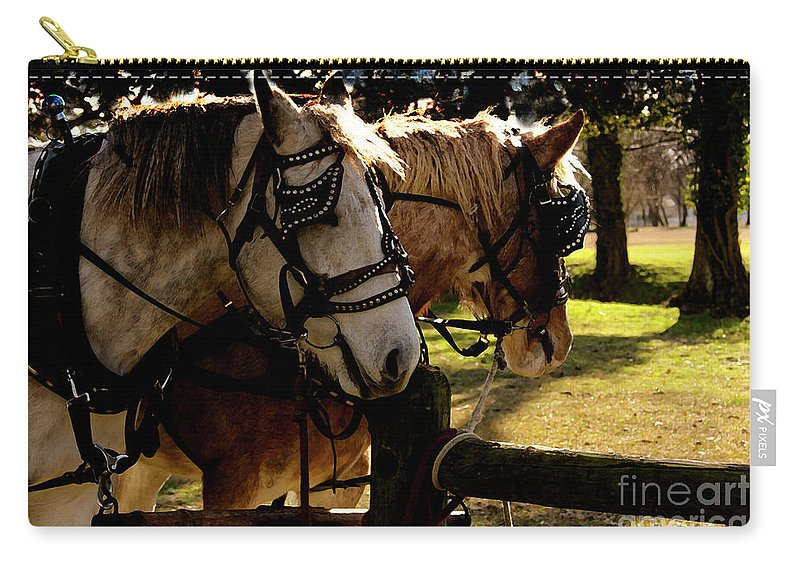 Horses Carry-all Pouch featuring the photograph Carriage Ride by Kim Henderson