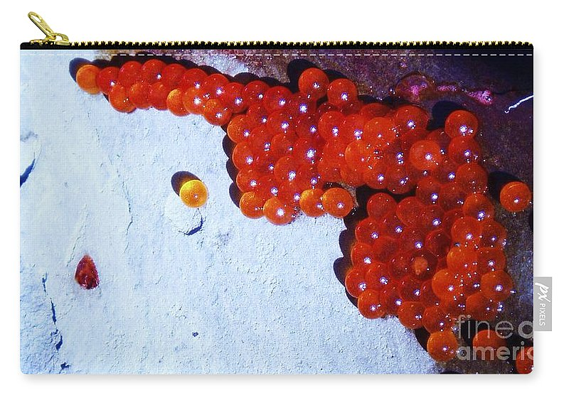 Photograph Fish Egg Lake Water Rock Carry-all Pouch featuring the photograph Don't Kill Me. by Seon-Jeong Kim