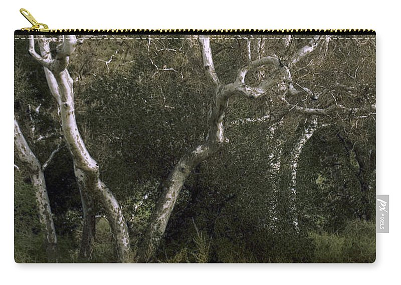 Tree Carry-all Pouch featuring the photograph Dv Creek Trees by Karen W Meyer