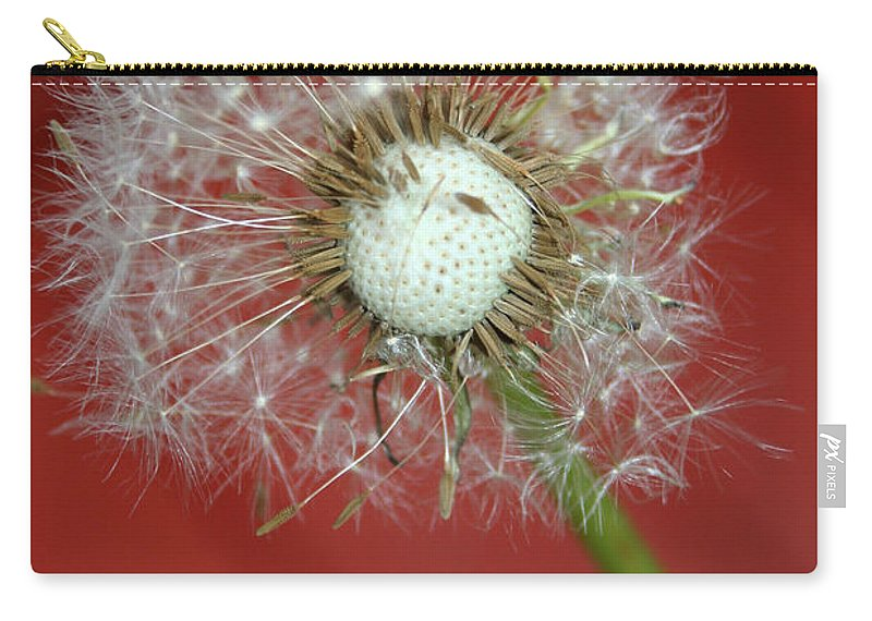 Nature Carry-all Pouch featuring the photograph Nature Red by Linda Sannuti