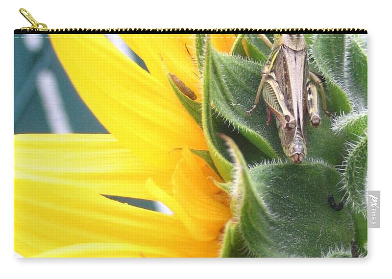 Sunflower Carry-all Pouch featuring the photograph ... Small Break by Line Gagne