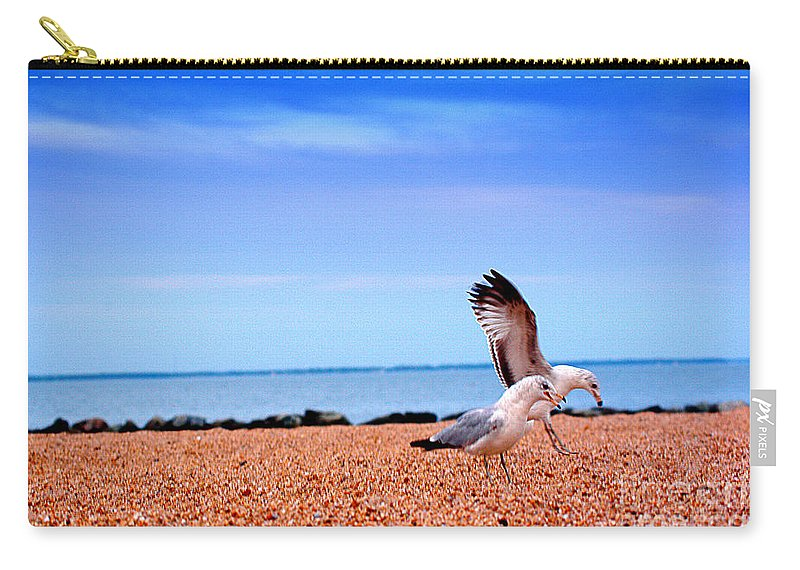 Clay Carry-all Pouch featuring the photograph A Day At The Beach by Clayton Bruster