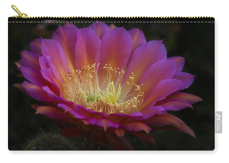 Night Blooming Cactus Carry-all Pouch featuring the photograph A Passion For Pink by Saija Lehtonen