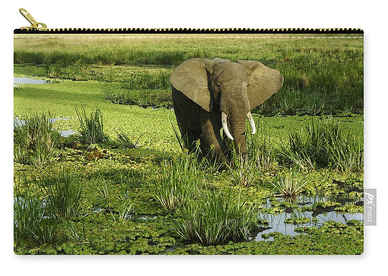 Africa Carry-all Pouch featuring the photograph African Elephant In Swamp by Michele Burgess