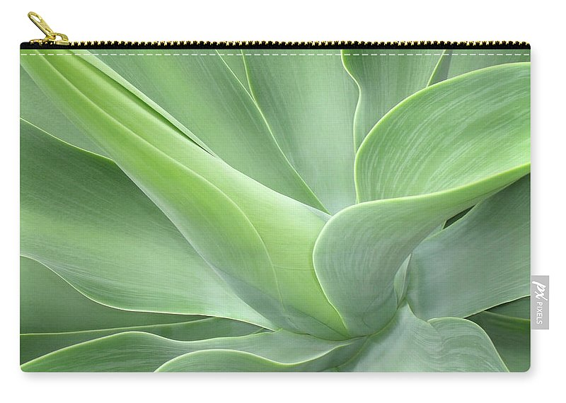 Agave Carry-all Pouch featuring the photograph Agave Attenuata Abstract by Bel Menpes