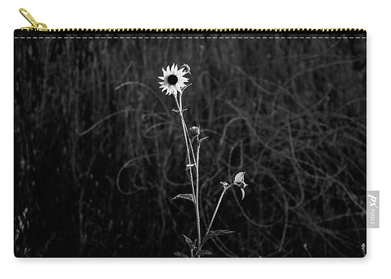 Black & White Carry-all Pouch featuring the photograph Alone by Peter Tellone