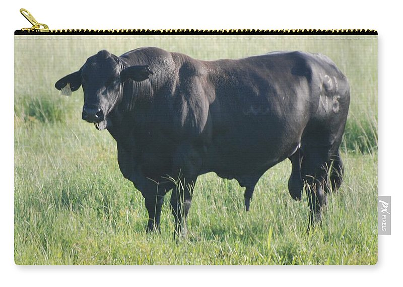 Cow Carry-all Pouch featuring the photograph American Cow by Rob Hans