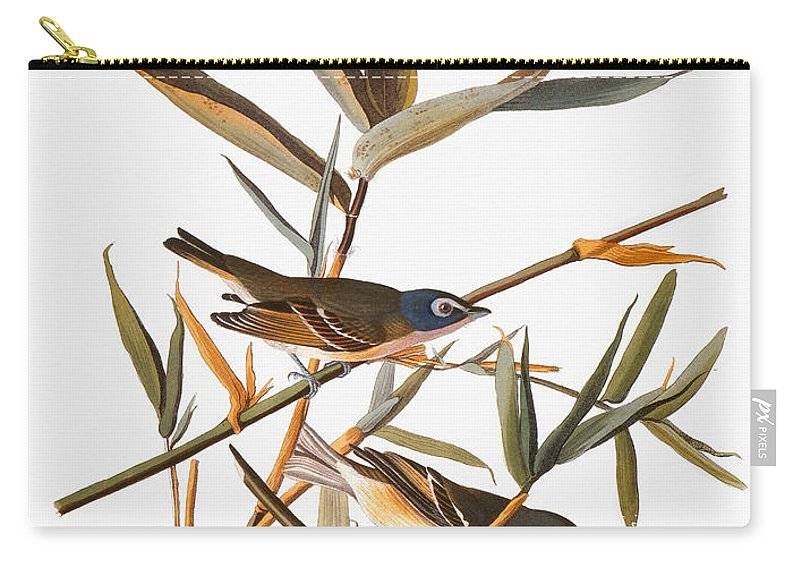 1838 Carry-all Pouch featuring the photograph Audubon: Vireo by Granger