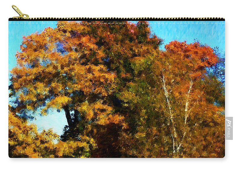 Digital Photography Carry-all Pouch featuring the photograph Autumn Leaves by David Lane