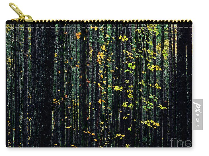 Nature Carry-all Pouch featuring the photograph Autumn Leaves by Jim Corwin