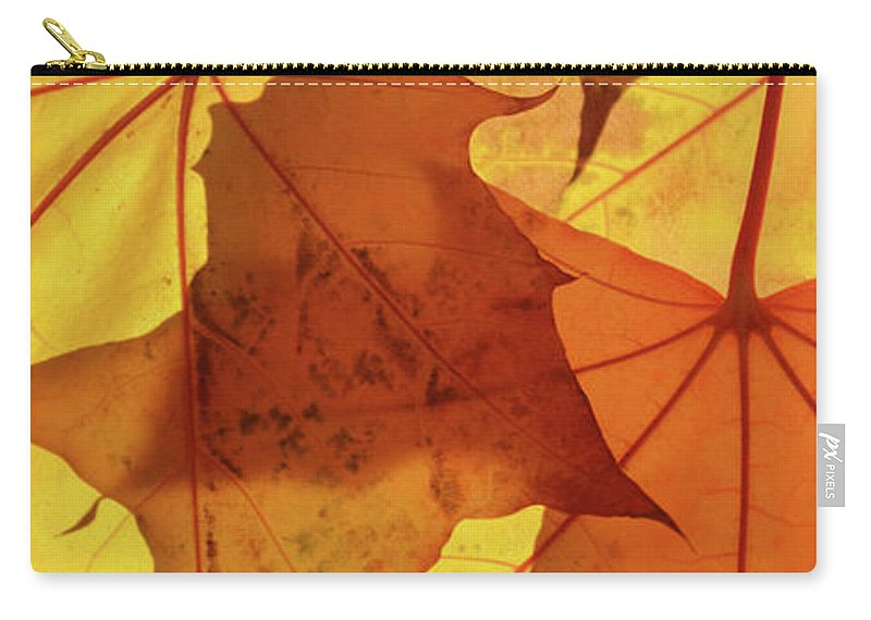 Maple Carry-all Pouch featuring the photograph Autumn Leaves by Whispering Peaks Photography