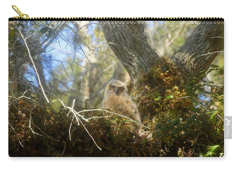 Great Horned Owl Carry-all Pouch featuring the photograph Babe In The Woods by David Lee Thompson