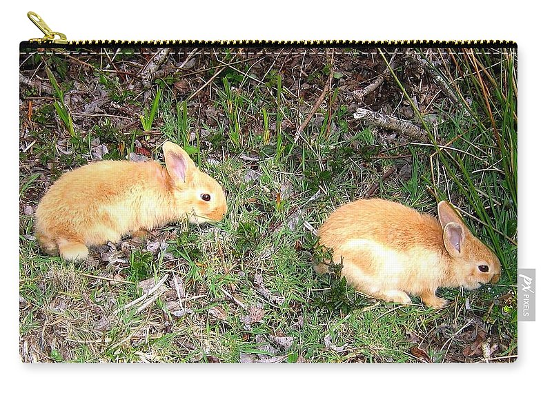 Rabbits Carry-all Pouch featuring the photograph Beach Buddies by Will Borden