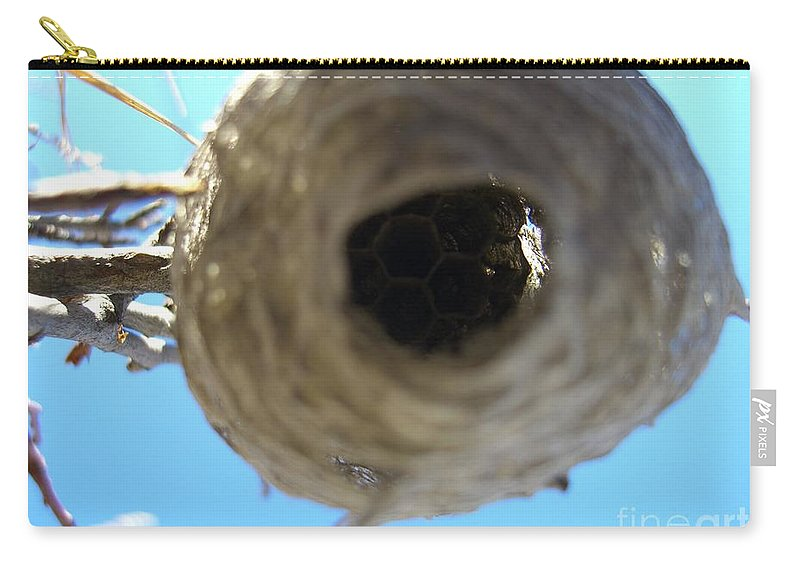 Photograph Bee Hive Blue Sky Branch Insect Carry-all Pouch featuring the photograph Bee Hive by Seon-Jeong Kim