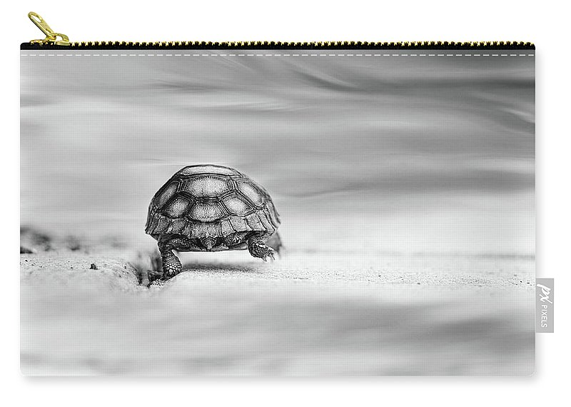 Fairytale Carry-all Pouch featuring the photograph Big Big World by Laura Fasulo