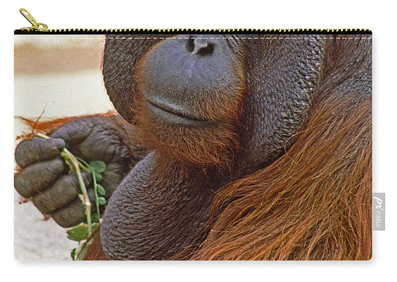 Orangutan Carry-all Pouch featuring the photograph Big Daddy by Michele Burgess