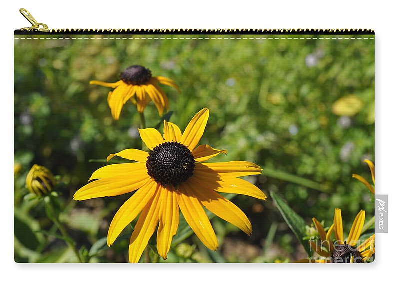Black-eyed Susans Carry-all Pouch featuring the photograph Black Eyed Susans by Penny Neimiller