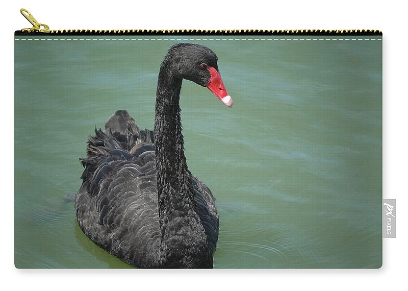 Swan Carry-all Pouch featuring the photograph Black Swan by FL collection