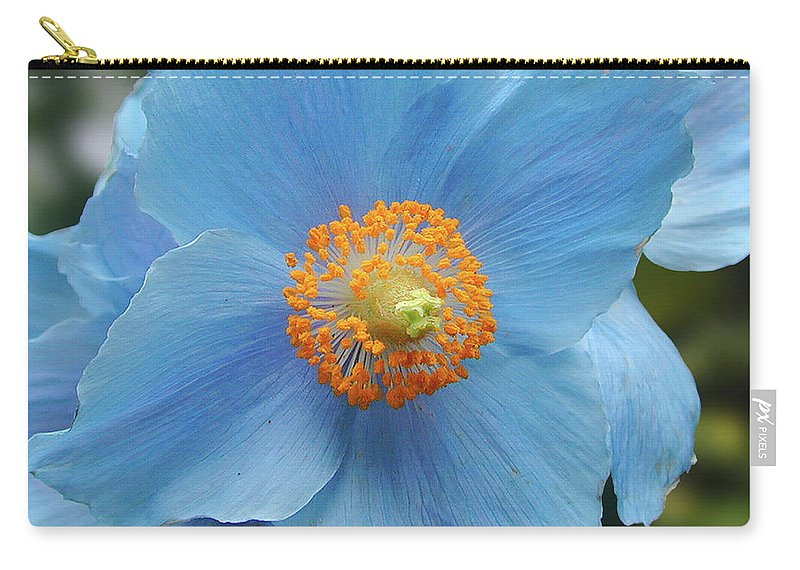 Blue Carry-all Pouch featuring the photograph Blue Flower, Butchart Gardens, Victoria BC Canada by Michael Bessler