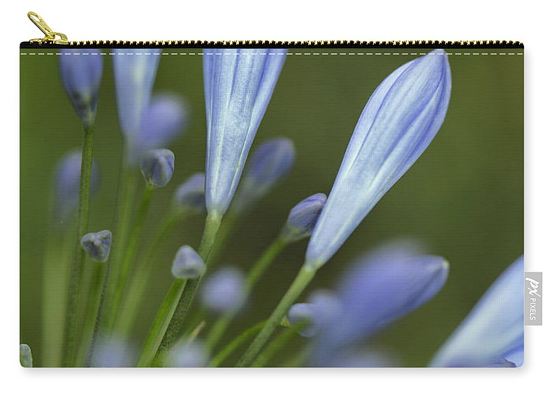 Flower Carry-all Pouch featuring the photograph Blue Flowers by Nailia Schwarz