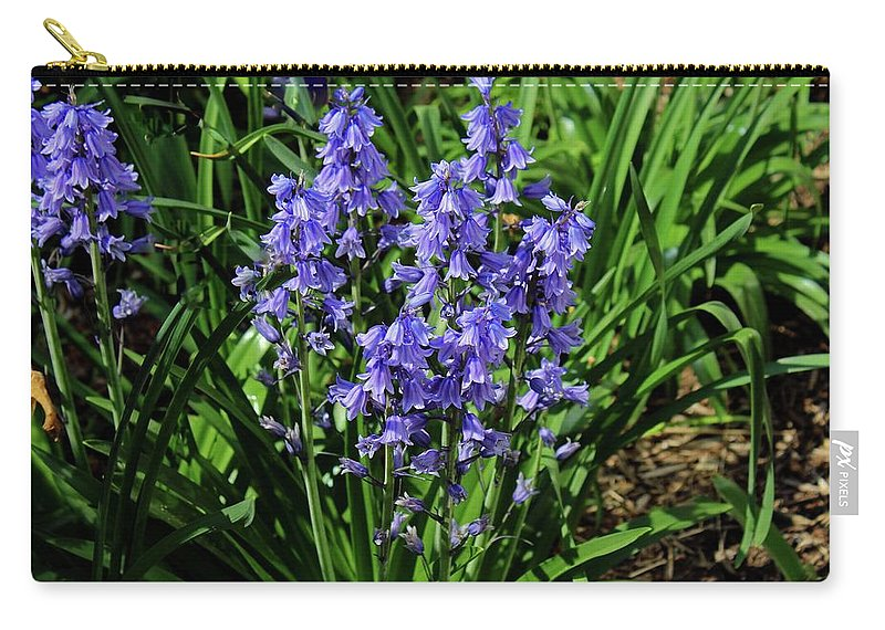 Bluebells Carry-all Pouch featuring the photograph Bluebells by Michiale Schneider