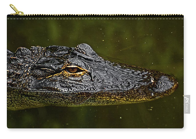 Alligator. Gator Carry-all Pouch featuring the photograph Brown Eye by Christopher Holmes