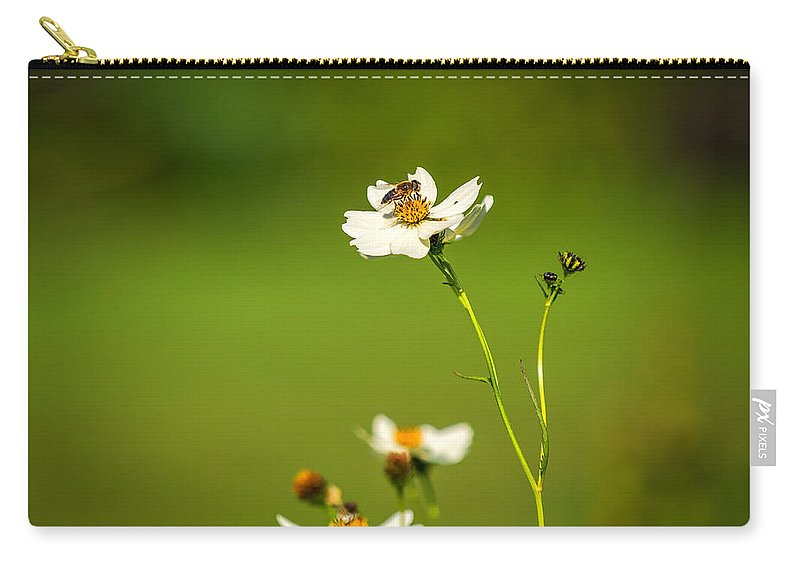 Wales Carry-all Pouch featuring the photograph Busy Bee by Mark Llewellyn