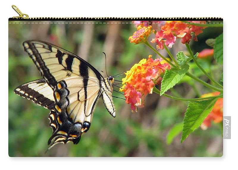 Butterfly Carry-all Pouch featuring the photograph Butterfly by Amanda Barcon