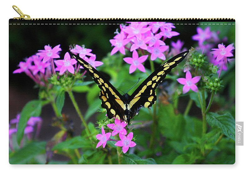Eastern Tiger Swallowtail Carry-all Pouch featuring the photograph Butterfly by Toni Hopper