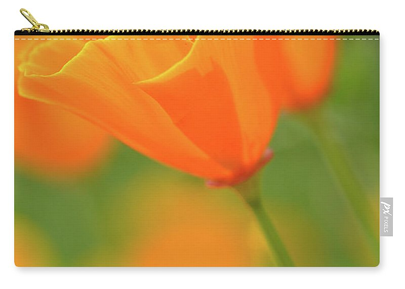 Flower Carry-all Pouch featuring the photograph California Spring Poppy Macro Close Up by Brandon Bourdages