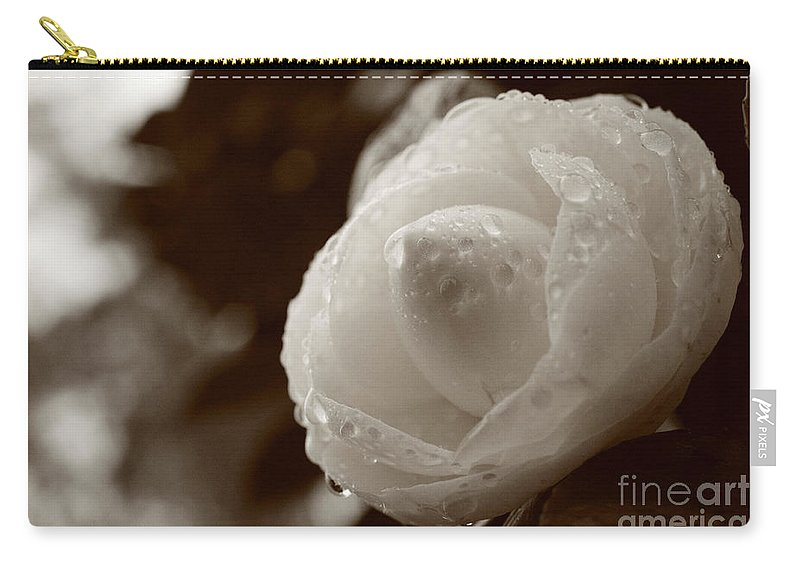 Bloom Carry-all Pouch featuring the photograph Camellia Japonica by Gaspar Avila