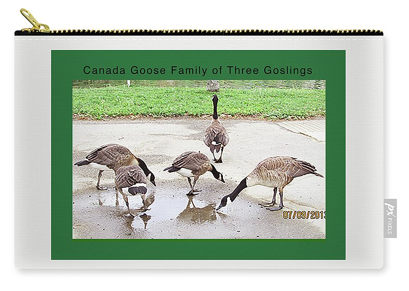 Birds Carry-all Pouch featuring the digital art Canada Goose Family Of Three Goslings by Kathleen J Beller