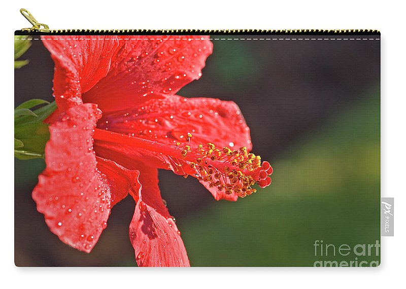 Psi Carry-all Pouch featuring the photograph Close Up Of A Red Hibiscus by Ofer Zilberstein