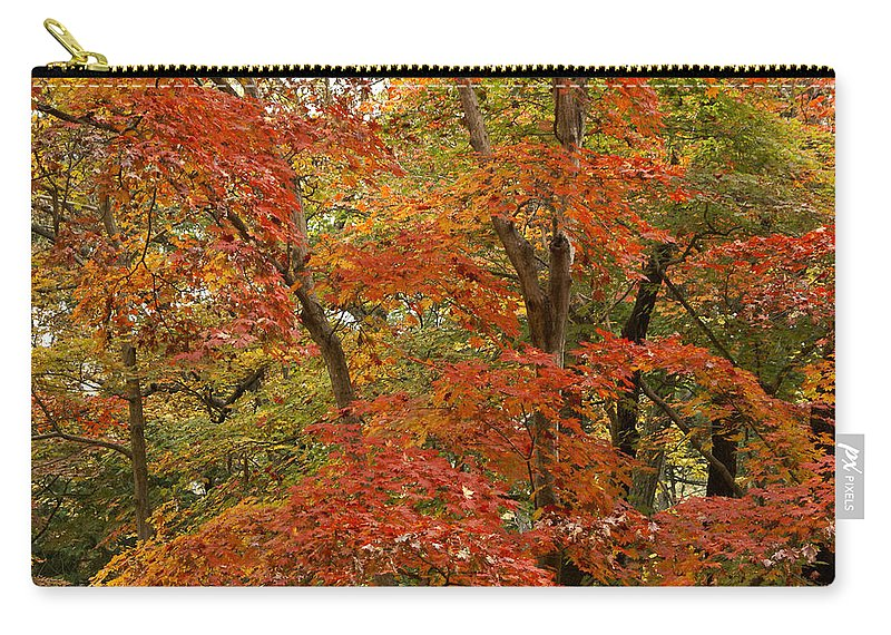 Autumn Carry-all Pouch featuring the photograph Colors Of Autumn by Michele Burgess
