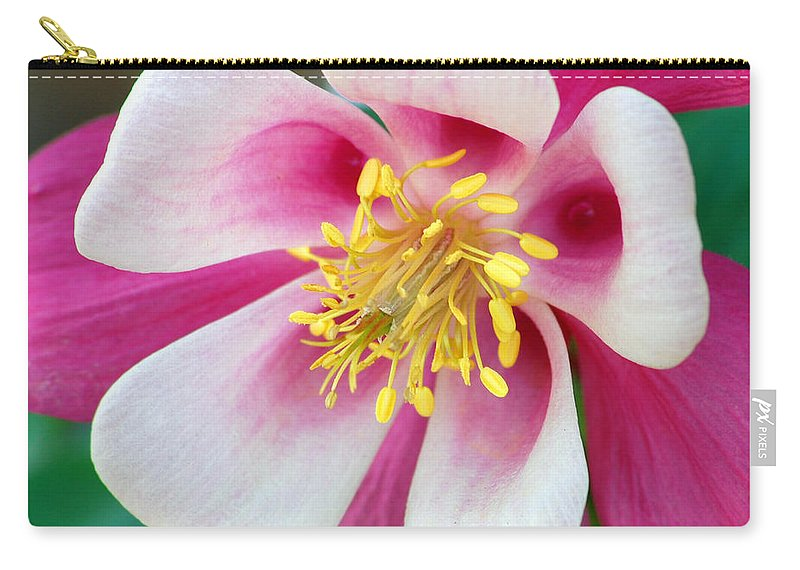 Columbine Carry-all Pouch featuring the photograph Columbine Flower 1 by Amy Fose
