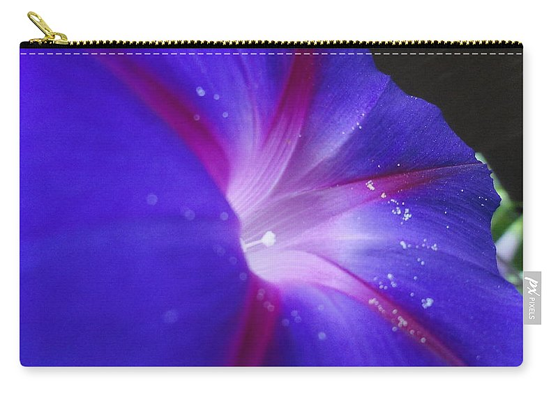 Clematis Carry-all Pouch featuring the photograph Come Hither Indigo by Trish Hale