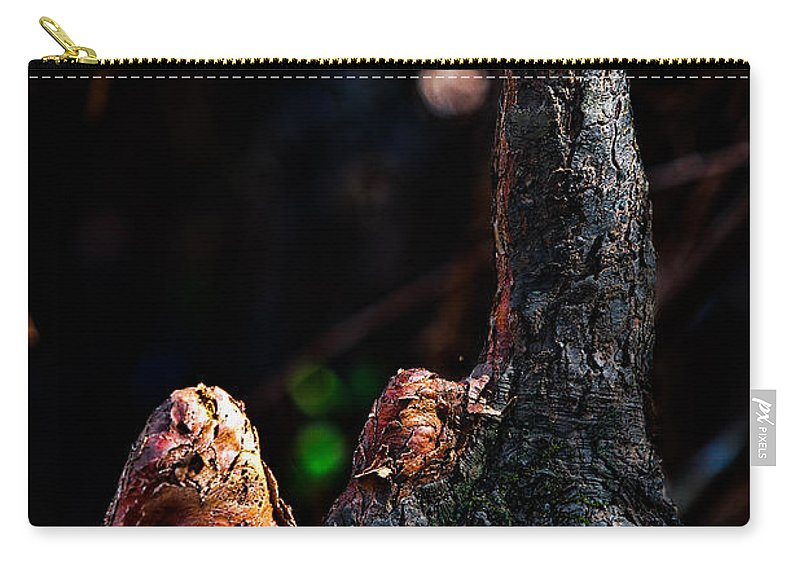 Nature Carry-all Pouch featuring the photograph Cypress Knees by Christopher Holmes