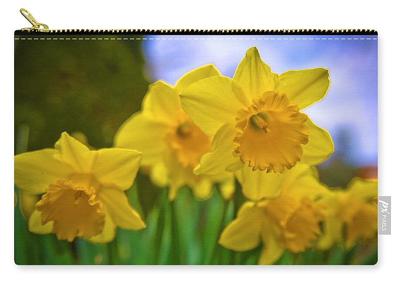 Flower Carry-all Pouch featuring the photograph Daffodils by Alex Art and Photo