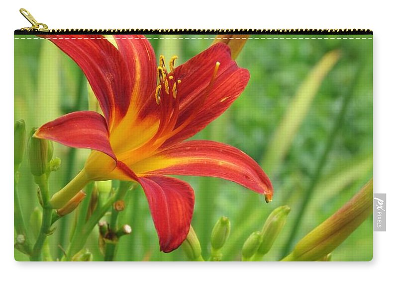 Daylily Carry-all Pouch featuring the photograph Daylily On Green by MTBobbins Photography
