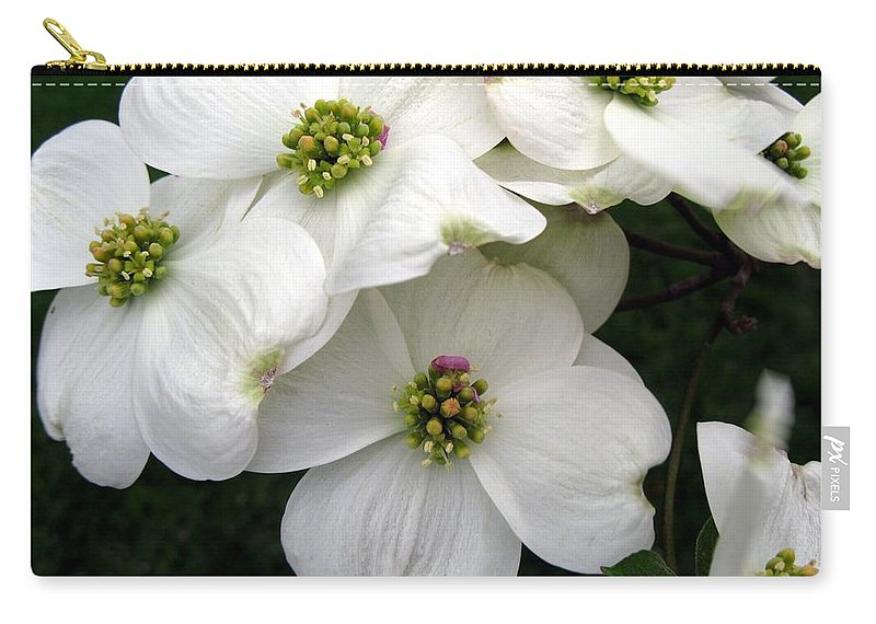 Dogwood Carry-all Pouch featuring the photograph Dogwood Branch by Carol Sweetwood