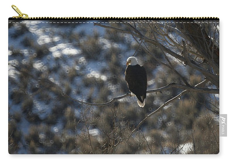 Animal Carry-all Pouch featuring the photograph Eagle In Tree by Ernie Echols