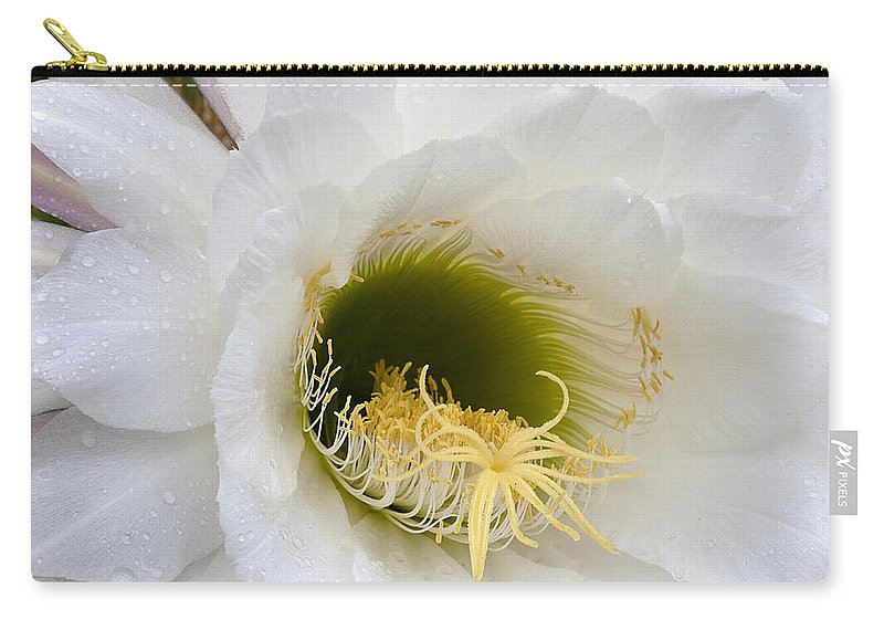 Flower Carry-all Pouch featuring the photograph Easter Lily Cactus by Phyllis Denton