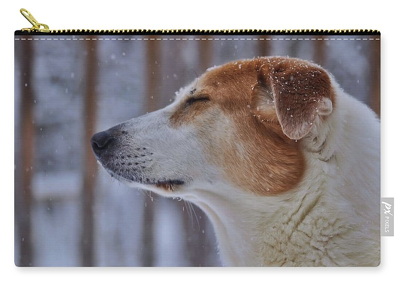 Winter Carry-all Pouch featuring the photograph Enchantment by JAMART Photography